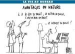 medium_Les_sucettes_a_l_anis_Avantage_en_nature.2.jpg